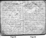 Diary Entries 3/29/1850 - 3/30/1850