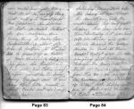 Diary Entries 4/5/1850 - 4/6/1850