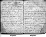 Diary Entries 4/6/1850 - 4/7/1850