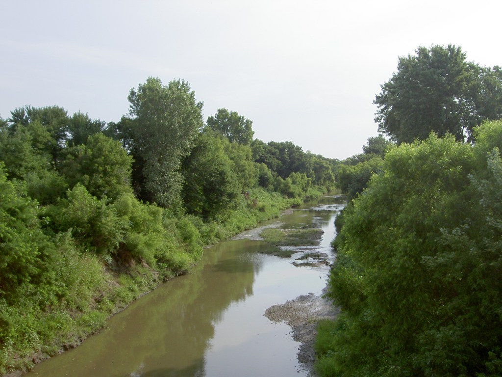 Wolf River looking north