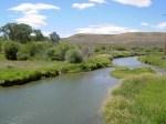 Ham's River
